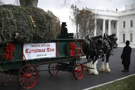 Minnesota Tree Arrives at White House